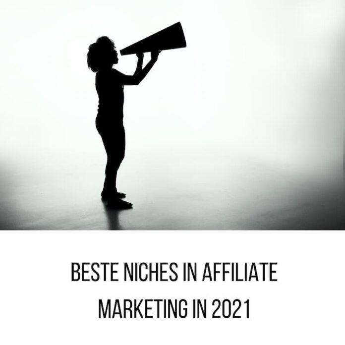 niches in affiliate marketing